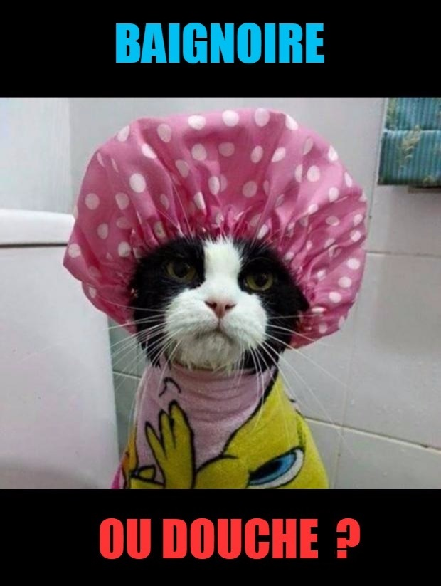 5 conseils simples pour l entretien de votre colonne de douche - Baignoire ou douche pour vendre ...